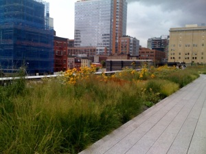 High Line1w